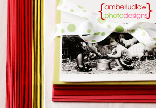 Amberludlowphotodesignsweb_3